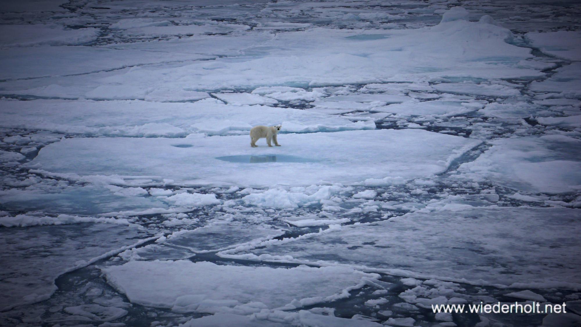 Svalbard East